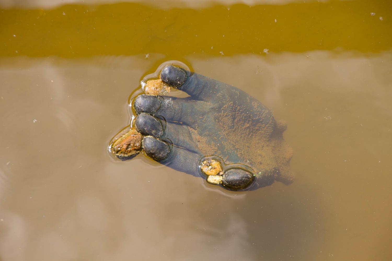 Verlorene-Handschuhe-1