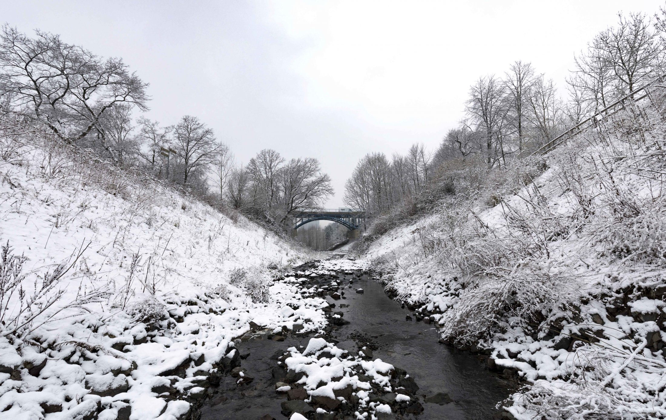 Borbecker Mühlenbach im Winter