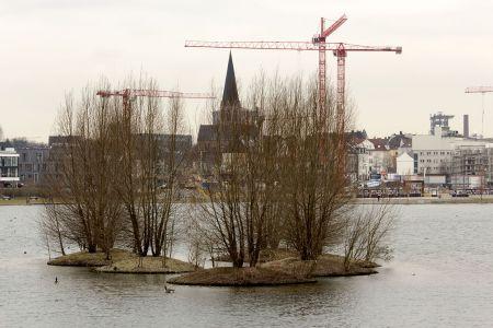 Insel im Phönixsee