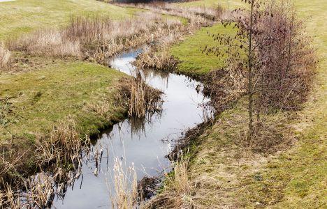 Phönixsee Zufluss