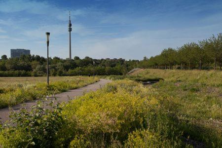 Dortmund-hörde-phoenix-west (5)