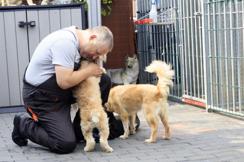 Der Hunderetter aus Kray und sein Team